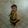 Photo #1 - Bumble Bee