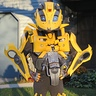 Photo #1 - Bumblebee Front View