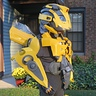 Photo #2 - Bumblebee Back View