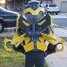 Photo #3 - Bumblebee Side View