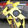 Photo #1 - Bumblebee