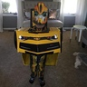 Photo #1 - Robot in Disguise