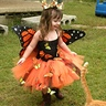 Photo #1 - My Butterfly
