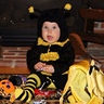 Photo #1 - Going through all her candy with her bee pail!