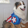 Photo #1 - Remy as Captain America