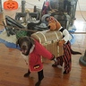 Photo #1 - Captain Olivia and her Pirate pal, Scooby, have discovered the buried treasure!