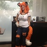 Photo #1 - Car Fox at work