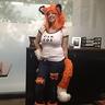 Photo #1 - Car Fox at work