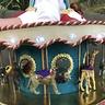 Photo #3 - Carnival Carousel