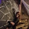 Photo #1 - Charlotte's Web 3