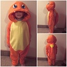 Photo #2 - Fire Pokemon Charmander
