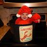 Photo #3 - Cutest live lobster!