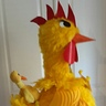 Photo #4 - Chicken