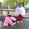 Photo #1 - Chicken and flamingo