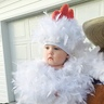 Photo #1 - Chicken Cuteness