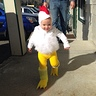 Photo #1 - Chicken on the loose