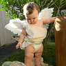 Photo #1 - Chubby Cherub