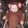 Photo #2 - Chubby Monkey