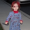 Photo #1 - Chucky - A girlie one