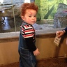 Photo #2 - Chucky at boo at the zoo
