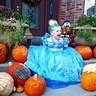 Photo #2 - Which Pumpkin Will Be My Carriage?