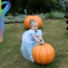 Photo #3 - Picking the best pumpkin for her carriage!