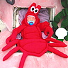 DIY Lil Lobster Costume