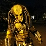 Photo #6 - Predator roaming the neighborhood Halloween night
