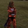 Photo #2 - Clemson Tiger