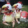 Photo #4 - KFC chickens