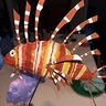 Photo #7 - The lion fish!