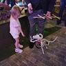 Photo #4 - A little girl meeting Scraps
