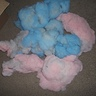 Photo #3 - Cotton Candy Pug