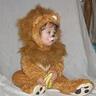 "Photo #1 - Xander the ""furr-ocious"" lion"