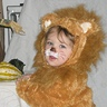 Photo #2 - Cowardly Lion