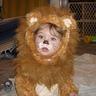 Photo #3 - Cowardly Lion