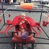 Photo #1 - Crab in a Crab Pot