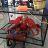 Photo #2 - Crab in a Crab Pot
