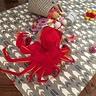 Photo #2 - Crabby Baby