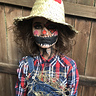 Photo #4 - Creepy Scarecrow