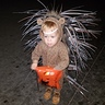 Photo #1 - Cute Baby Porcupine
