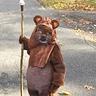 Photo #1 - Cute Ewok