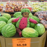 Photo #6 - Lil' Watermelon
