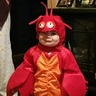 Photo #1 - Cute Lobster