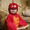 Photo #2 - Cute Lobster