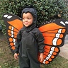 Photo #1 - Cute Monarch Butterfly