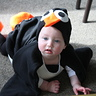 Photo #3 - Cute Penguin