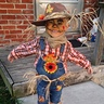 Photo #5 - Cute Scarecrow