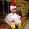 Photo #3 - The cutest little chicken!