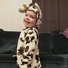Photo #4 - Cutest Little Cow